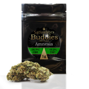 AMNESIA CANNABIS FLOWER HEMP BUD